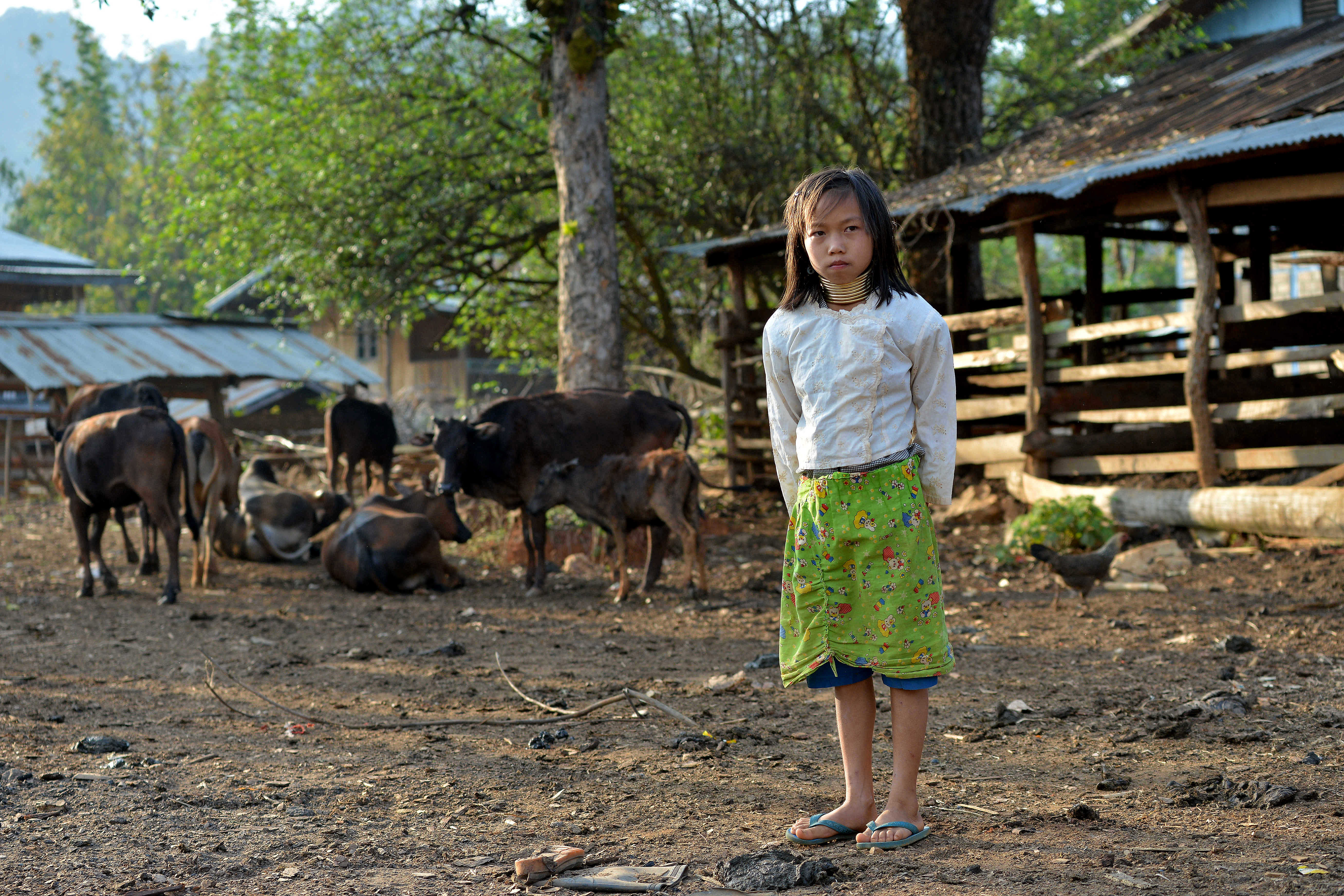 """In this picture taken on March 6, 2016 a Kayan tribesgirl wearing a stack of bronze neck coils -- the statuesque sign of beauty of her Kayan tribe -- stands in Panpet village located in Demoso township in Kayah state, central Myanmar. For years Kayan women and girls have been driven across the border by poverty and conflict to pose in holidaymakers' pictures in purpose-built Thai villages, decried by campaigners as """"human zoos"""" that exploit a vulnerable minority. / AFP PHOTO / PHYO HEIN KYAW / TO GO WITH AFP STORY: Myanmar-Thailand-tourism-leisure-culture, FEATURE by Phyo Hein Kyaw"""