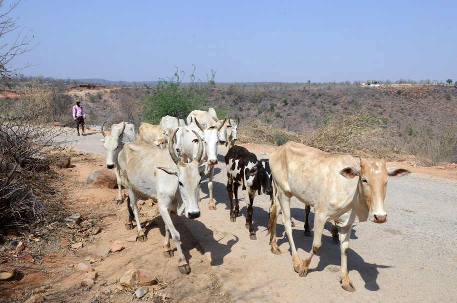 INDIA-WEATHER-DROUGHT