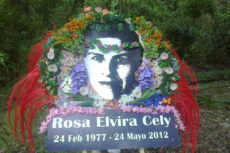 Rosa Elvira Cely