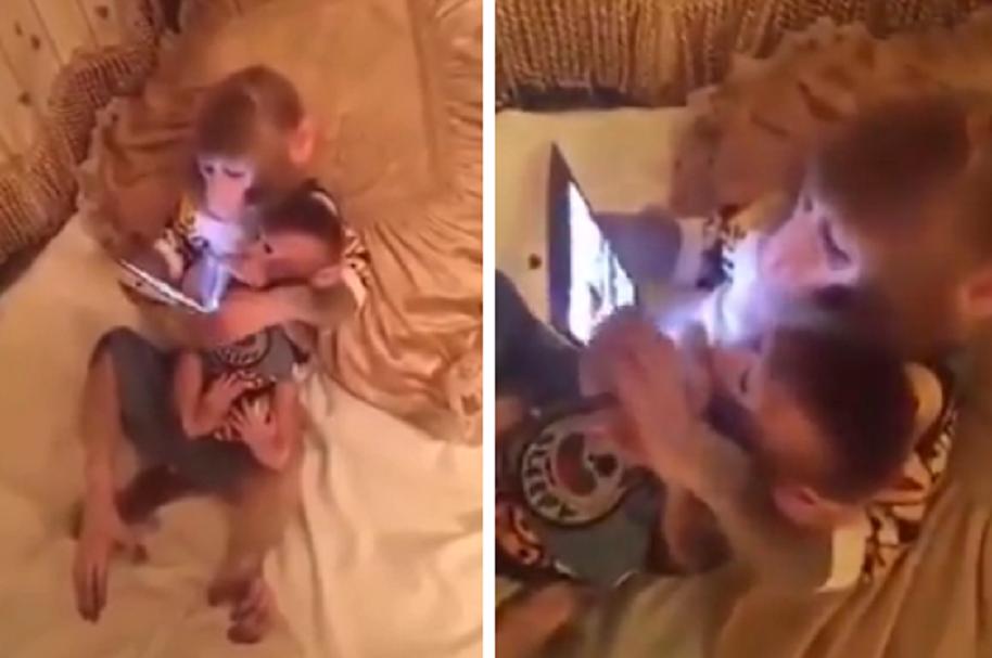 Mono con su hijo