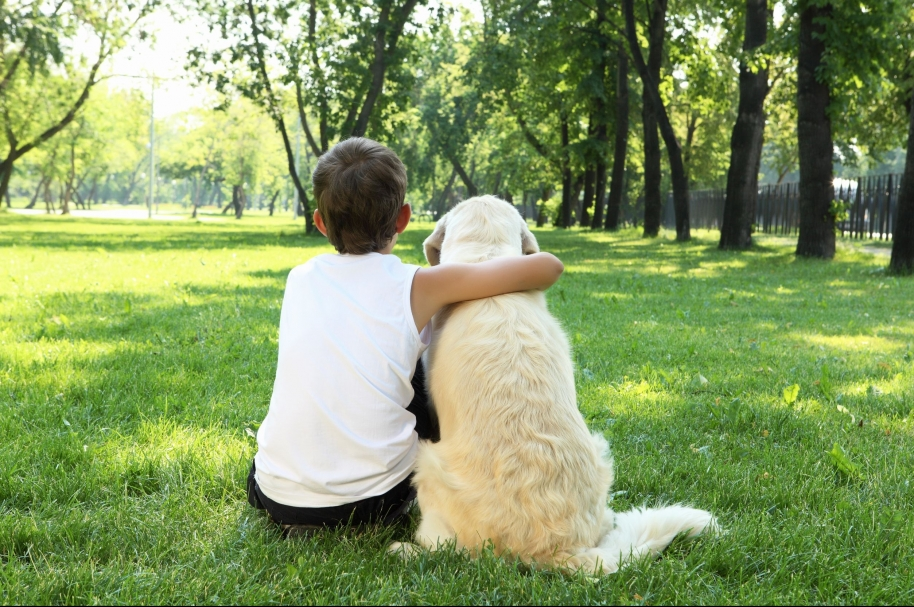 Cuide los niños y las mascotas