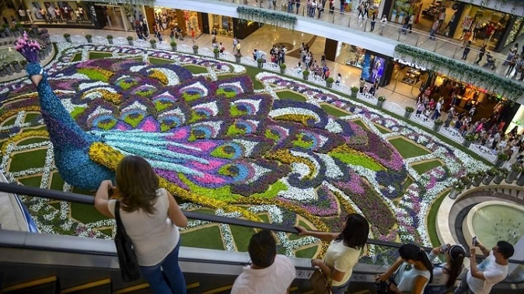 Feria de las flores de Medellín - Pulzo.com