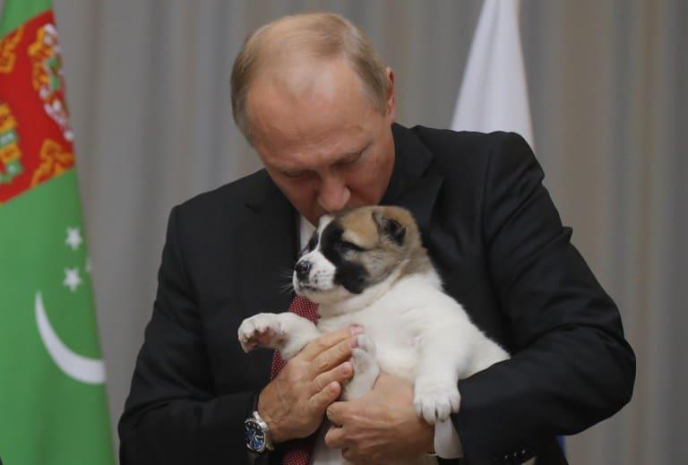 Vladimir Putin y su nuevo perrito. Pulzo.