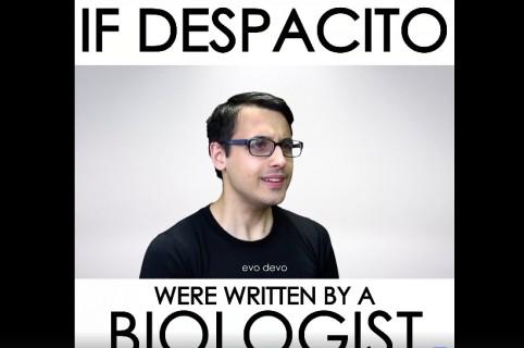 Versión de 'Despacito' dedicada a la biología. Pulzo.
