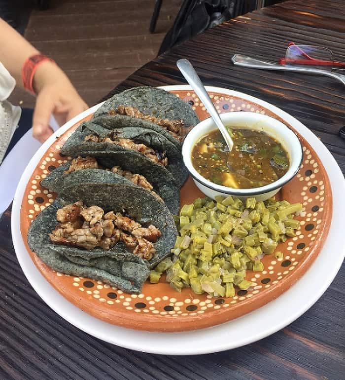 Tacos mexicanos y nopal