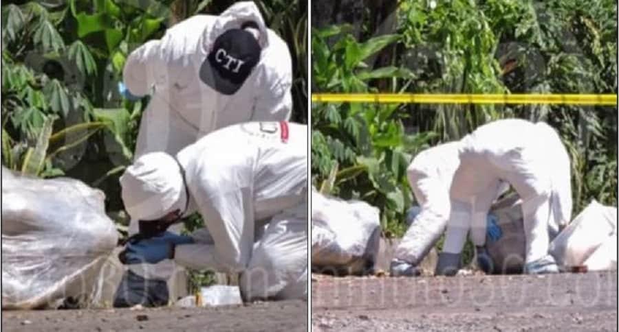 Investigadores analizan cuerpos hallados