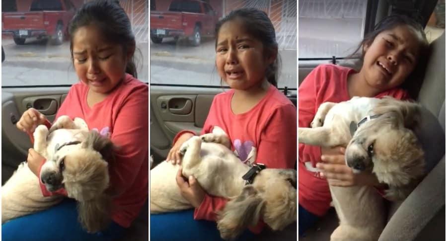 Niña lloró por corte de pelo de su perro. Pulzo.