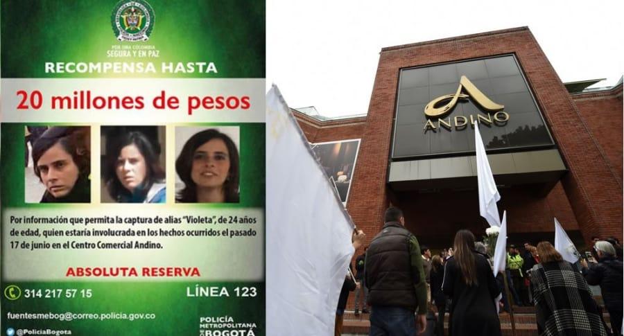 Violeta Arango y Centro Andino