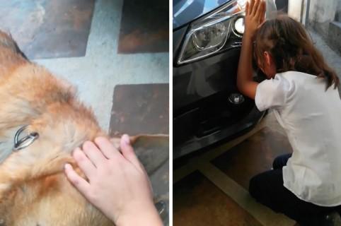 Niña llorando por la muerte de su perro